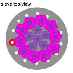 Hydrangea Flower Ring Tutorial Tutorial Step 11
