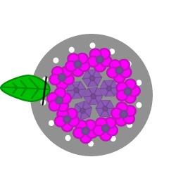 Hydrangea Flower Ring Tutorial Tutorial Step 12
